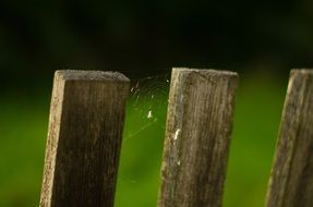 spider web on old wooden fence