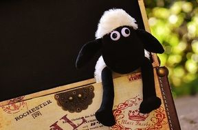 soft toy sheep in the box
