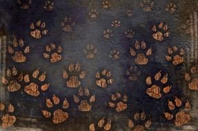 Clipart of Dog Paw Prints