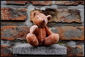 Teddy Bear on the wall