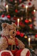 Teddy Christmas Soft Toy