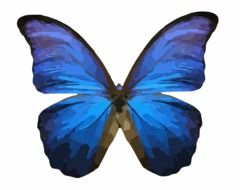 graphic image of a bright blue butterfly
