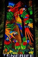colorful Towel with exotic parrots