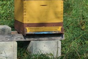 yellow beehive in the meadow