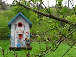 color birdhouse