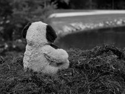 Black and white photo of the Teddy Bear