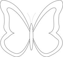 outline of a butterfly