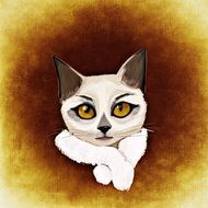 drawing of a white cat on a brown background