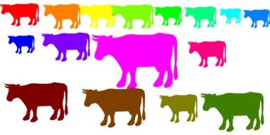 graphic image of multi-colored cows
