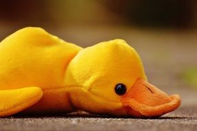 funny soft toy in the form of a duck