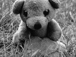 black and white photo of a teddy bear near the stone