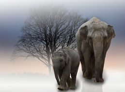 two elephants among nature as a photo montage