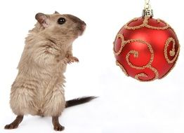 mouse and christmas decoration concept art