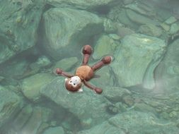 Monkey toy in the Sea