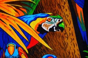 Parrot color drawing