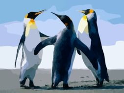 Colorful drawing of the Arctic Penguins clipart