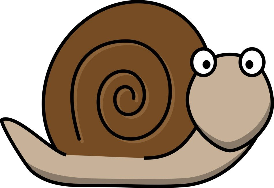 graphic image of a brown snail