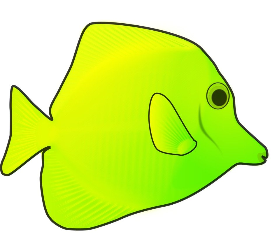Yellow and green fish clipart