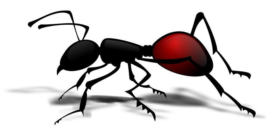 Clipart of the dark ant