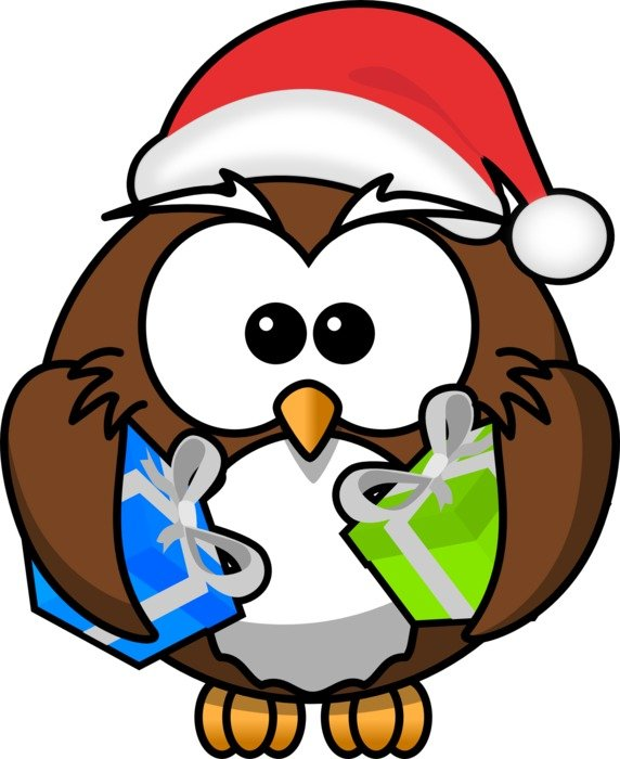Owl Santa drawing