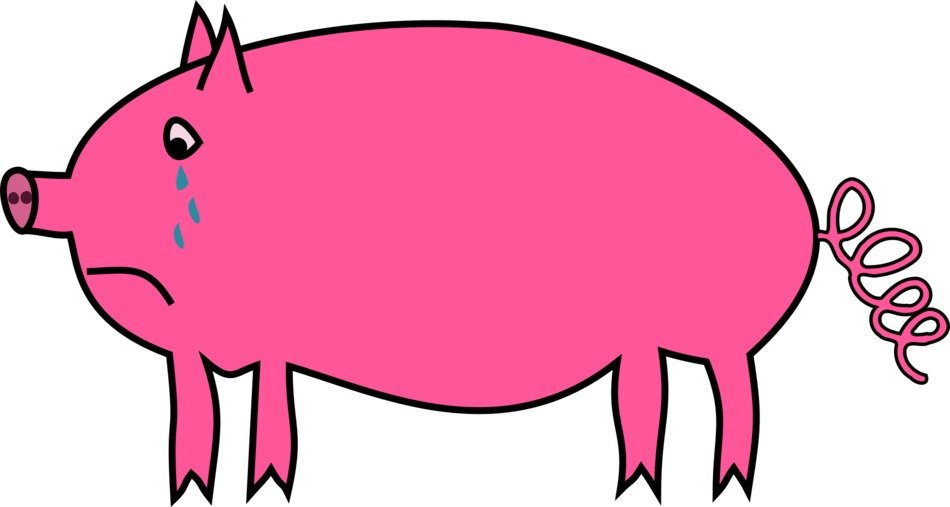 painted crying pink pig