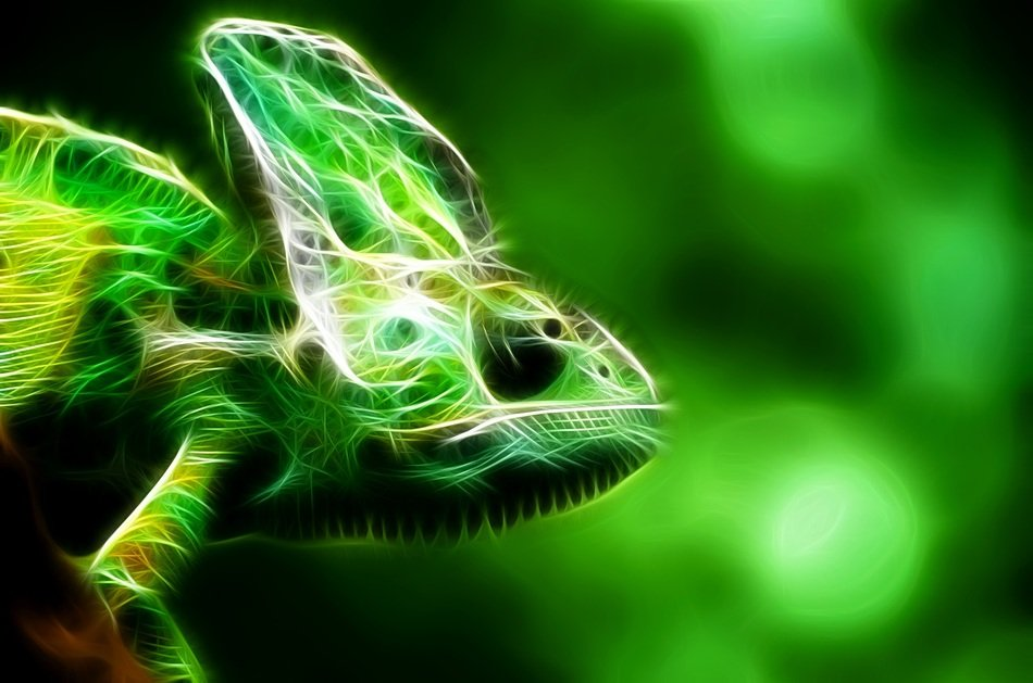 lizard in a green fractal