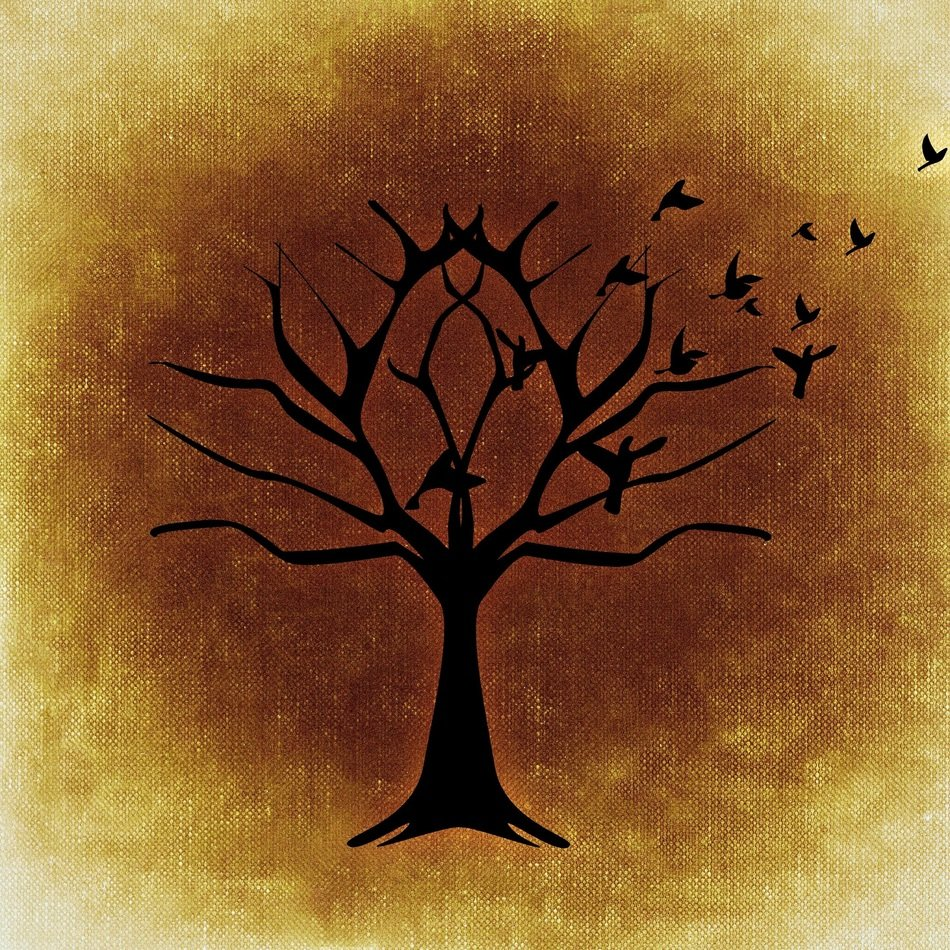 tree silhouette with migratory birds
