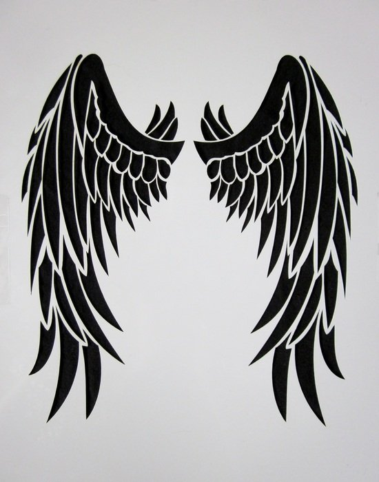 Black and white drawing of the wings