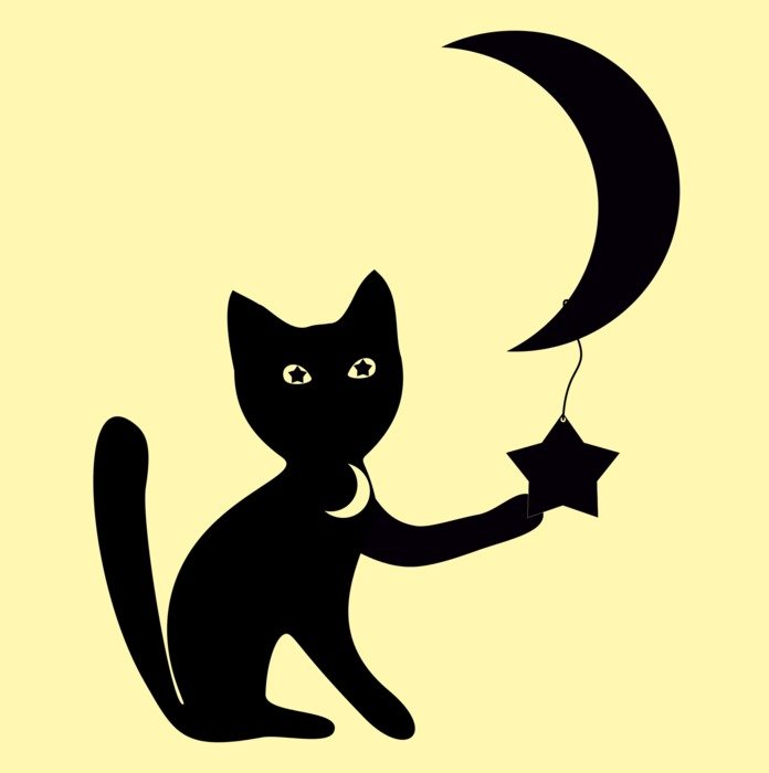 graphic image of a black cat with the moon