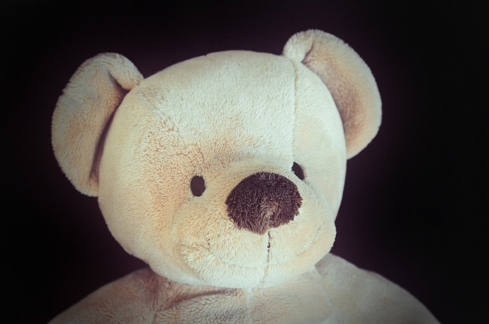 unmatched Bear Soft Toy