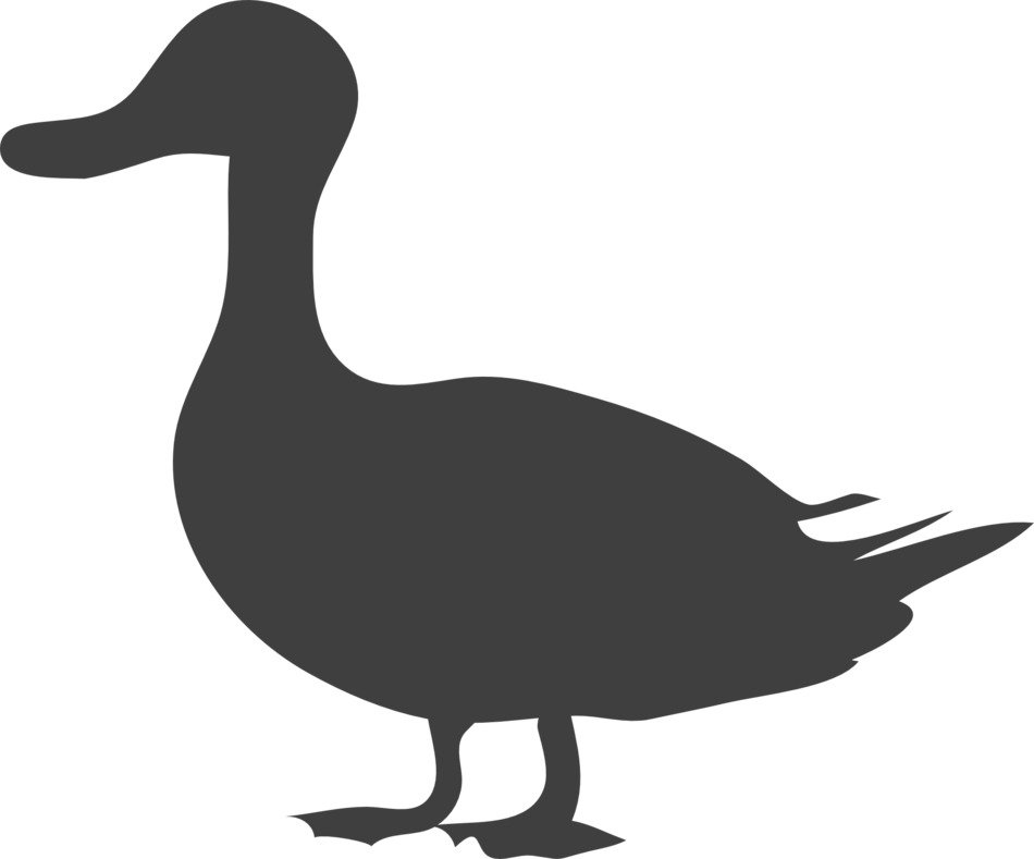 grey silhouette of a duck