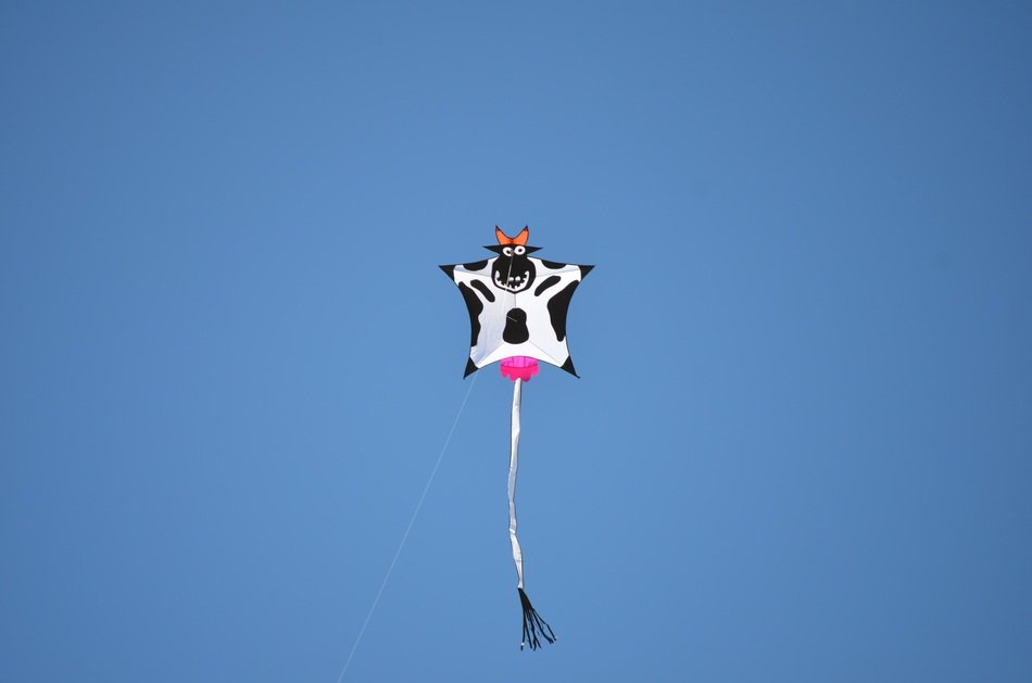 kite with cow pattern