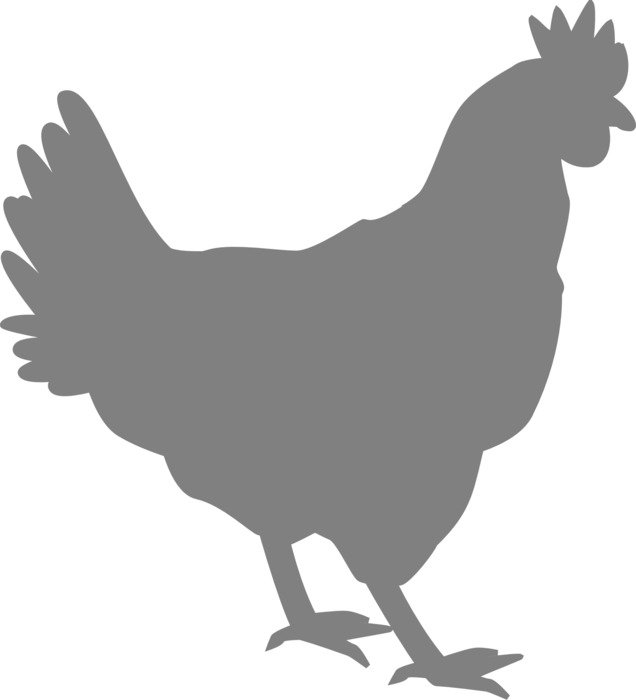 grey silhouette of a cock