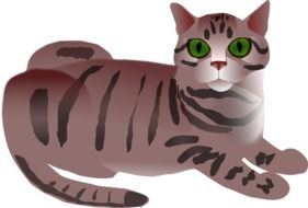 lying Tabby Cat with green eyes, drawing