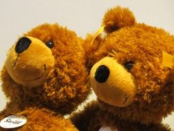 cuddly teddy bears