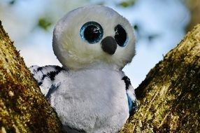 soft toy snowy owl with blue eyes