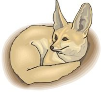 clipart of the cute eared fox