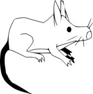 drawing rodent on a white background