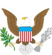 American emblem with eagle