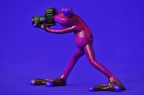 purple ceramic frog with camera on the violet background