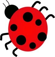ladybug drawing with black dots on a white background
