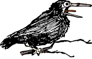 black crow as a graphic image