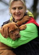french mastiff puppy in owners hands