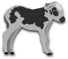 gray-black painted calf