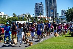 people at the dog parade