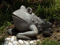 ceramic toad in the garden
