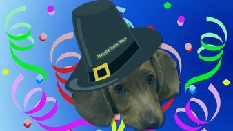 painted dachshund in black hat