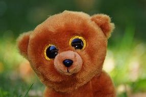 cute stuffed teddy bear with glitter eyes