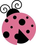 pink Lady Bug drawing