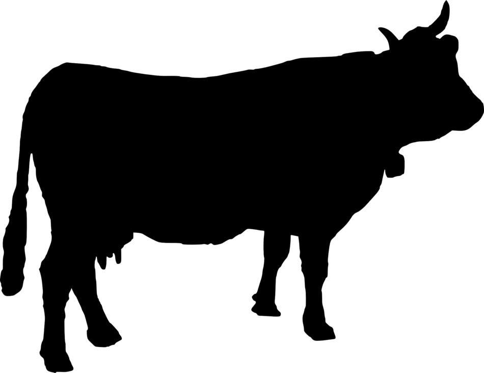 black silhouette of a horned cow